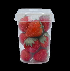 envases-fruta-compostables
